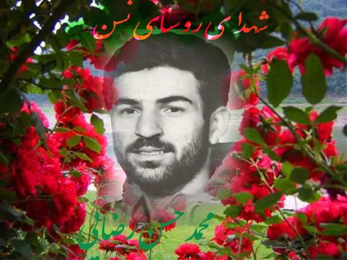 mohamad_rezay