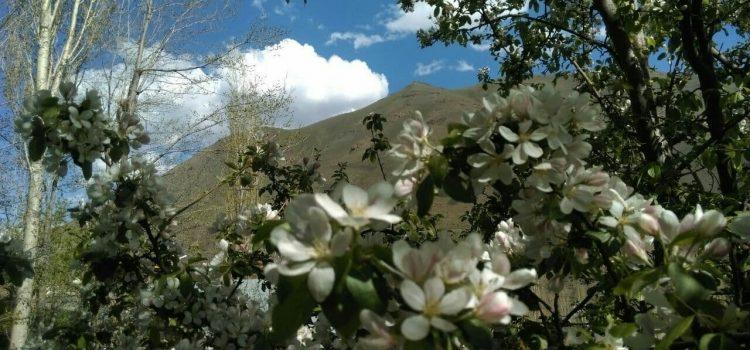 منظره های زیبای نسن در اردیبهشت ۱۴۰۰